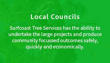 s-councils